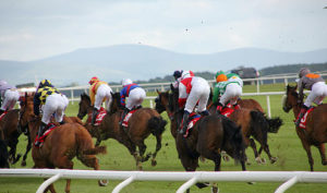 Racing at The Curragh Racecourse