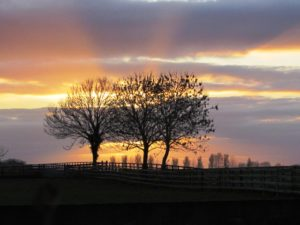 Sunset at Tully, Co. Kildare