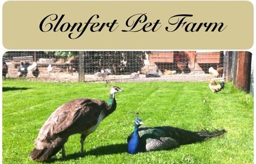 clonfert-pet-farm-logo1