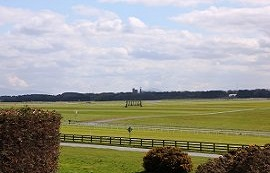 The Curragh