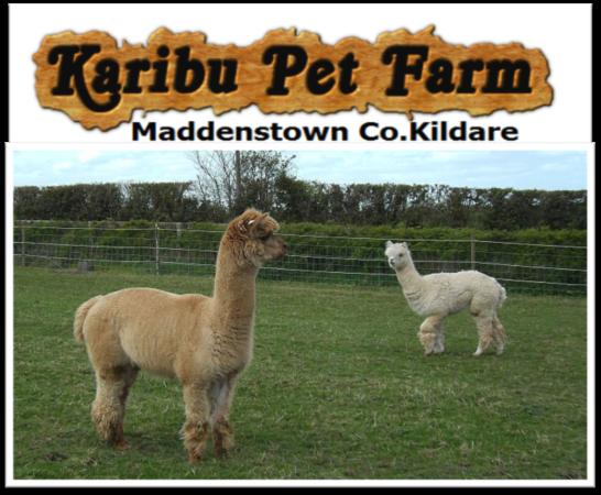 karibu-pet-farm