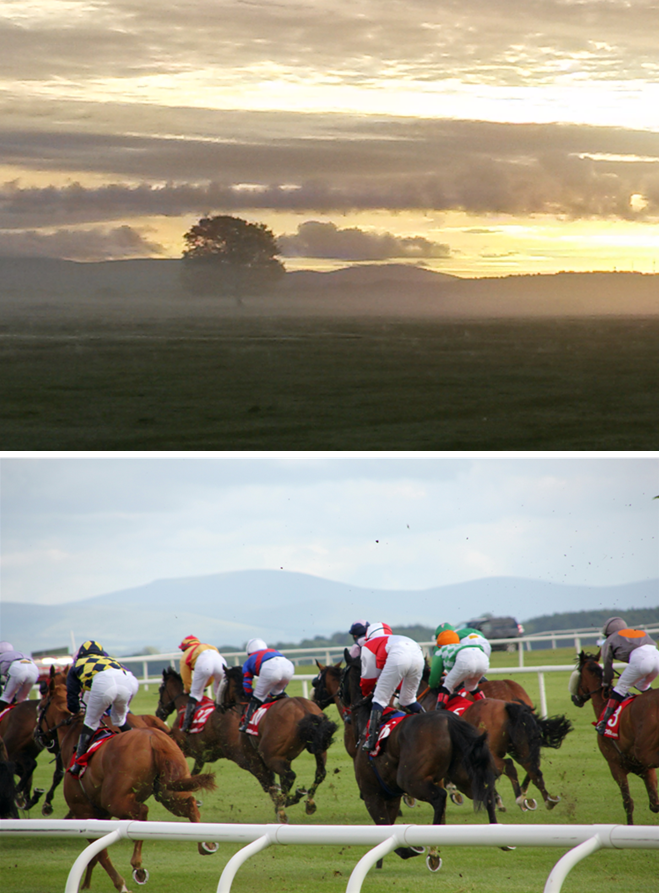 the-curragh-images