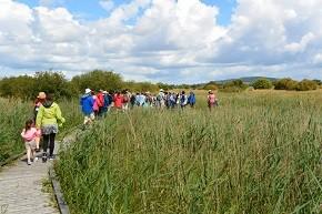 Long walk Brigids Way