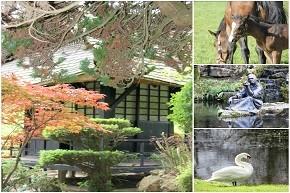 Irish National Stud, Japanese Gardens & St. Fiachras Garden